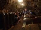 Morawy_jaskinie_i_wino_29